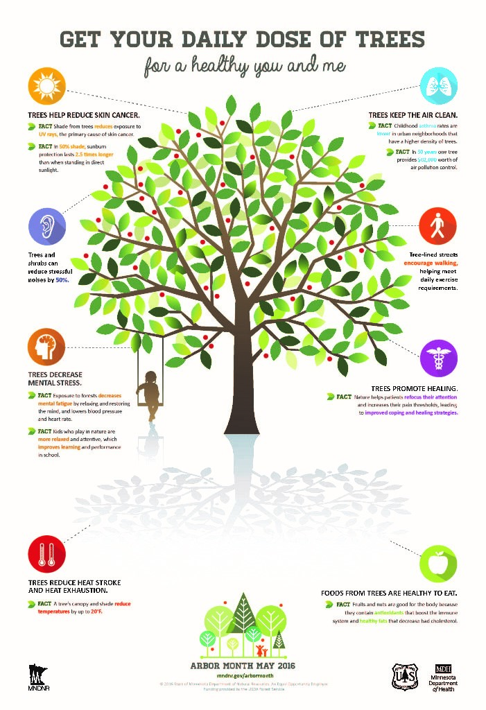 A poster showing all the good things that trees do for us